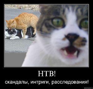 300pxSkand_4435398_29194656.jpg